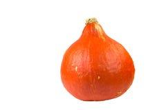 Hokkaido pumpkin. Isolated on White background royalty free stock photo