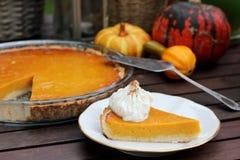 Hokkaido pumpkin pie Stock Image