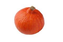 Hokkaido pumpkin Royalty Free Stock Photo