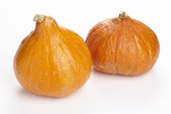 Hokkaido pumpkin Stock Image
