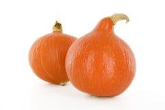 Hokkaido pumpkins Royalty Free Stock Photo
