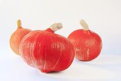 Hokkaido pumpkins Stock Photo