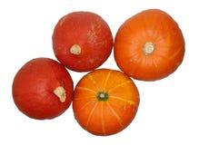 Hokkaido pumpkins, Cucurbita maxima Stock Photo