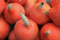 Hokkaido Pumpkins on Farmers Market stock images