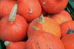 Hokkaido Pumpkins on Farmers Market stock photography