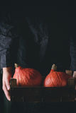Hokkaido pumpkins in woman's hands Stock Photos