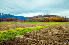 Hokkaido Road trip. Beautiful view along the road from Chitose Airport to Furano, a small town located in Hokkaido, Japan. Driving in Hokkaido is amazing, the Stock Photo