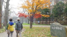 Hokkaido University at fall season stock footage