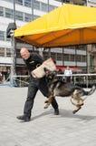 Hol policie Brno Stock Foto's