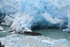 Hol van de gletsjer van peritomoreno Stock Foto