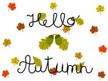Hola Autumn Hand Written Concept con el roble y las hojas de arce en blanco Imágenes de archivo libres de regalías