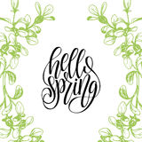 Hola bandera de la tipografía de las letras de la primavera Fondo de las hojas y de las flores del vector Cita manuscrita de la d ilustración del vector