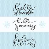 Hola diciembre enero febrero Icono manuscrito del invierno Ejemplo caligráfico del vector libre illustration