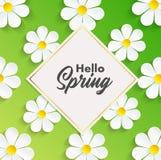 Hola fondo de la primavera con las flores de la manzanilla stock de ilustración