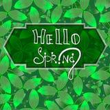 Hola fondo verde de la primavera con las hojas EPS10 Foto de archivo libre de regalías