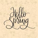 Hola inscripción de las letras de la mano de la primavera Tarjeta de felicitación del resorte Caligrafía del cepillo Imagen de archivo