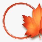 Hola la caída del vector de Autumn Sales deja la bandera de la venta de la estación con el lugar para el texto Foto de archivo