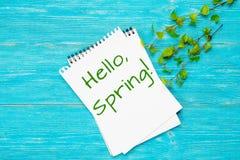Hola la primavera, mensaje con el abedul de la primavera ramifica Foto de archivo libre de regalías