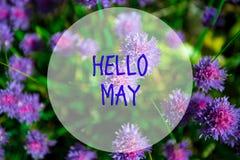 Hola mayo, mensaje con escena hermosa de la naturaleza fotografía de archivo libre de regalías
