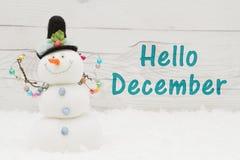Hola mensaje de diciembre Foto de archivo