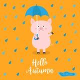 Hola otoño Cerdo que sostiene el paraguas azul Gotas de lluvia, charco Emoción triste enojada Caída del odio Carácter divertido l ilustración del vector