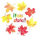 Hola otono εγγραφή και φύλλα σφενδάμου watercolor συρμένη χέρι Στοκ Εικόνα
