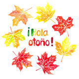 Hola otono watercolor hand drawn lettering and maple leaves. Hola otono meaning 'Hello autumn' in spanish watercolor hand drawn lettering and fall colored maple Stock Image