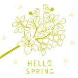 Hola primavera Foto de archivo