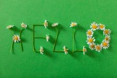 Hola primavera Imagen de archivo libre de regalías