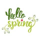 Hola primavera Dé las letras, inscripción de la caligrafía con las hojas de la primavera Foto de archivo libre de regalías