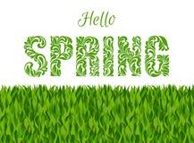 Hola, primavera Fuente decorativa hecha de remolinos y de elementos florales Fondo hecho de hierba Foto de archivo libre de regalías