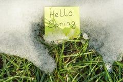 Hola primavera Nieve de fusión en hierba verde Imagen de archivo libre de regalías