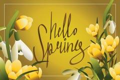 Hola primavera que pone letras a la postal o a la bandera horisontal Imágenes de archivo libres de regalías