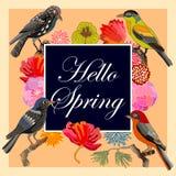 Hola primavera Tarjeta del vintage con los pájaros y las flores de la fantasía Fotos de archivo libres de regalías