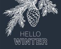 Hola tarjeta del invierno Fotografía de archivo libre de regalías