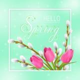Hola tipografía de la primavera stock de ilustración
