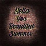 Hola usted letras hermosas del verano Imagen de archivo libre de regalías