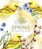 Hola vector de la acuarela de la tarjeta de la primavera con los pájaros y las flores lindos Pequeños pájaros de oro Las manchas  ilustración del vector