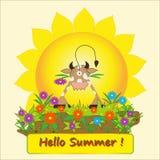Hola verano Fotografía de archivo libre de regalías