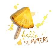 Hola verano Piña fresca Foto de archivo libre de regalías