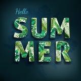 Hola verano, verano El cartel del texto contra el fondo Imagen de archivo