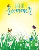 Hola verano, vuelo de la mariposa sobre la hierba con las flores, primavera Foto de archivo