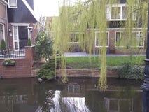 Holandie Obrazy Stock