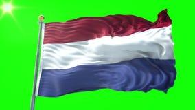 Holandie zaznaczają bezszwowego zapętla 3D renderingu wideo Piękny tekstylny sukienny tkaniny pętli falowanie royalty ilustracja