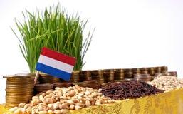 Holandie zaznaczają falowanie z stertą pieniądze monety i stosami banatka Zdjęcia Royalty Free