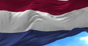 Holandii flaga w wiatrze royalty ilustracja