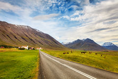 Holar, Iceland Stock Photo