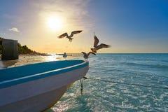 Holbox热带海岛在金塔纳罗奥州墨西哥 库存图片