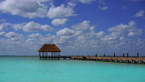 Holbox östrand i Mexico det karibiska havet stock video