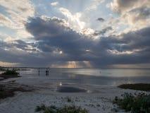 Holbox, Μεξικό, Νότια Αμερική: [Τροπική χαλάρωση στο νησί Holbox, τόπος προορισμού τουριστών, φύση, παραλία, ζούγκλα φοινικών στοκ φωτογραφία
